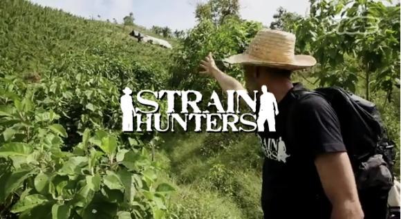 Uno de los Strain hunters mostrando variedades de semillas del mundo