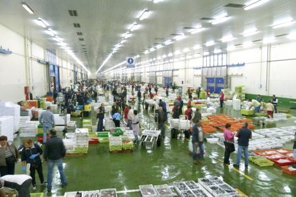 venta de molusco bivalvo y pescado fresco en la lonja de Vigo
